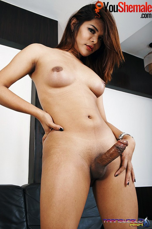 Sexy Asian trannys hard cock and perfect tits!
