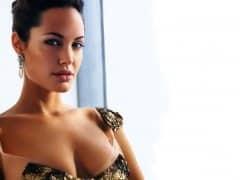 Angelina Jolie Boobs Pictures