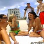 Jayden Jaymes, Eva Angelina and Ashlynn Brooke with their curves seducing horny guys